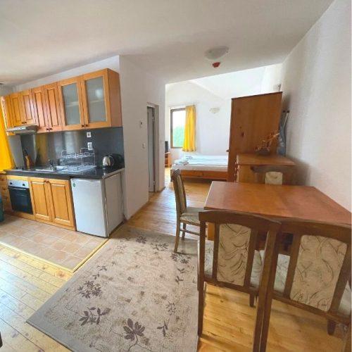 four leaf clover studio plus apartment in bansko