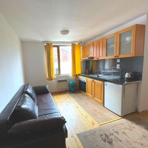 four leaf clover studio plus apartment living room